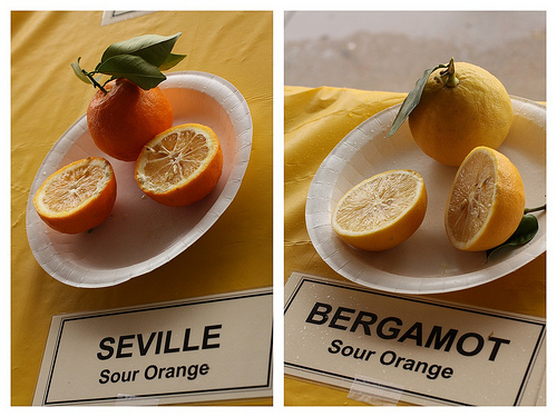 Sour orange by La.Catholique, on Flickr